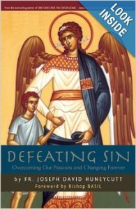 Defeating Sin: Overcoming Our Passions and Changing Forever  - Fr. Joseph Huneycutt